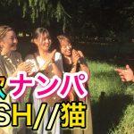 【歌ナンパ】DISH//の「猫」を歌って女子のLINEゲットだ?!